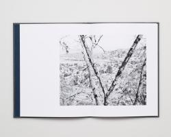 BOOKCONTENT-53 - Virginia Wilcox